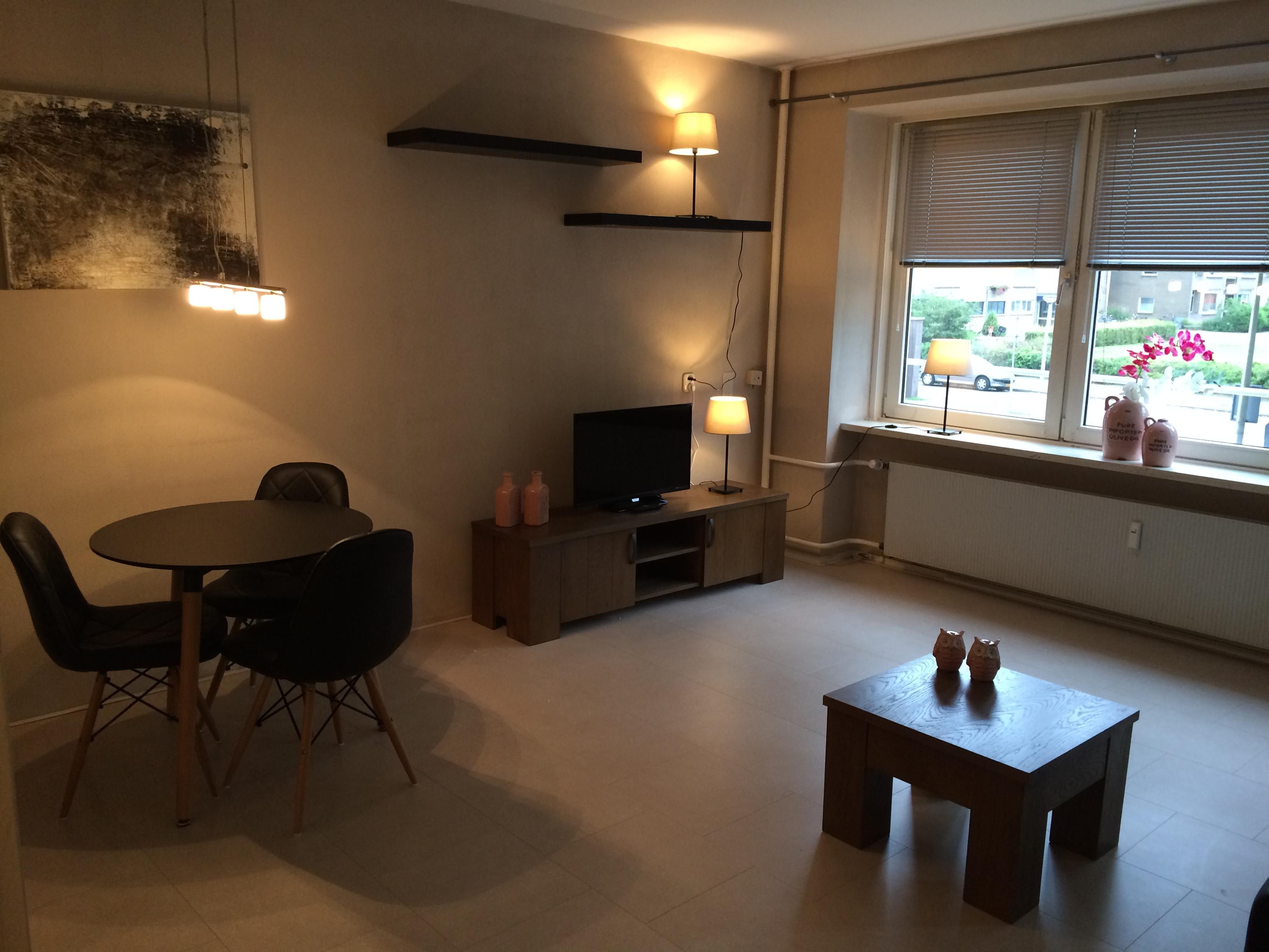Te huur 2033 gemeubileerd appartement dichtij het centrum en de universiteit van enschede - Gemeubileerde woonkamer ...