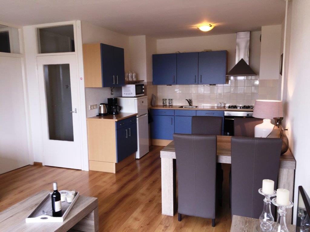 Te huur 2045 nieuw gemeubileerd appartement dichtbij het centrum en de universiteit van - Center meubilair keuken ...